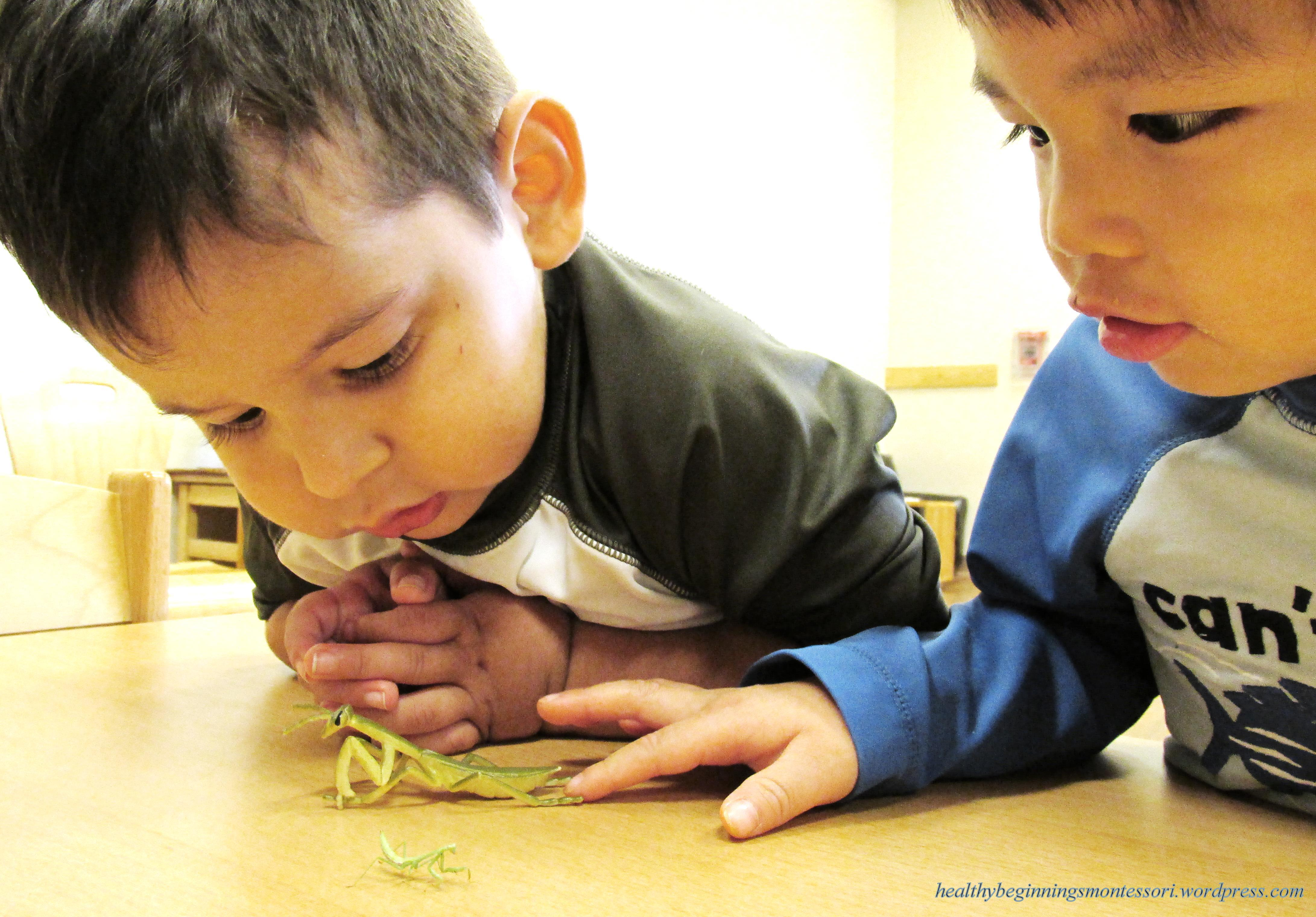 Photo Of The Day Discovery Infant Daycare In Plano Tx