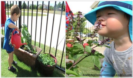 gardening_1