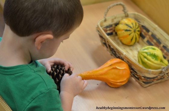 A few simple fall items such as pine cones, gourds, pumpkins, leaves, or twigs can create an exciting sensorial work for any child.