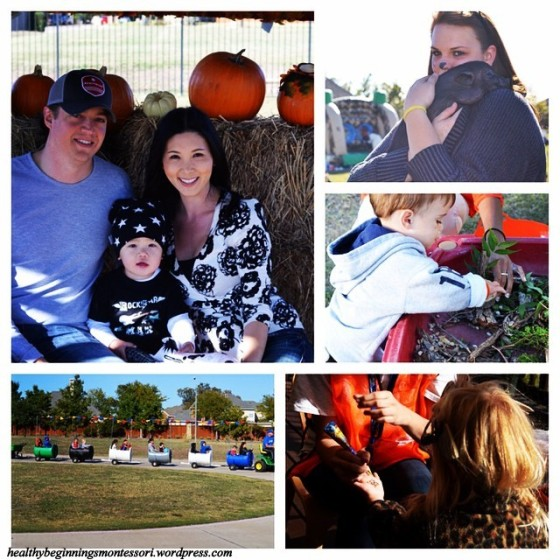 instagram_fall festival_1