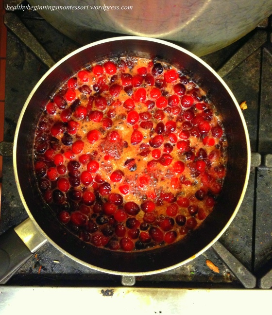 Cranberries marinating in  a bath of apple cider and cinnamon, to be used later for apple cider!
