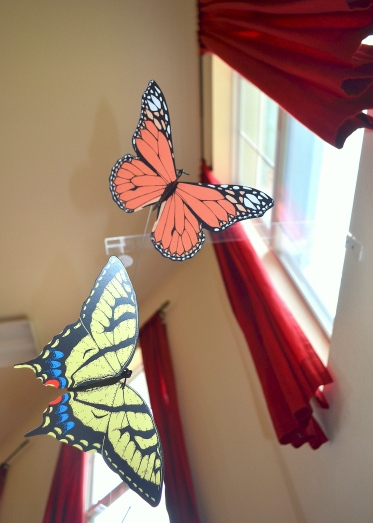The butterfly mobile in our Infant Nido, photo taken from the viewpoint of our babies. Although delicate and simple, the contrasting colors invite the child to use their visual senses to study the shapes and the natural movement of the butterflies as they move with the air currents of the room. I sat beside one of our young friends as we studied the mobile for several minutes, attempting to see what he was seeing.