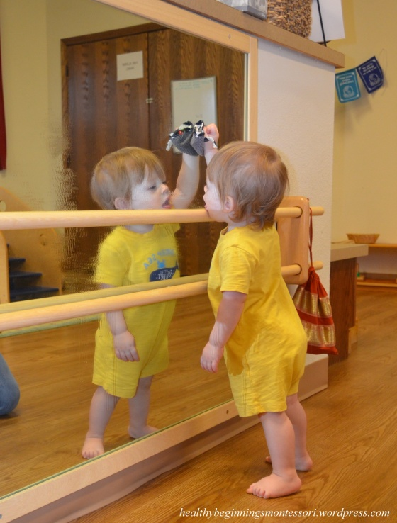 Infant Mirror Cleaning_1