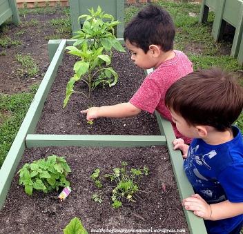 gardening_3