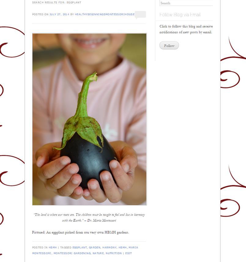 Flashback Friday: Eggplant